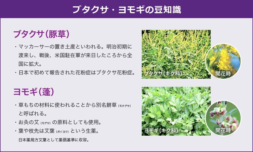 秋にも花粉!?ハウスダストって?|鼻炎Q\u0026A|アレルギー専用